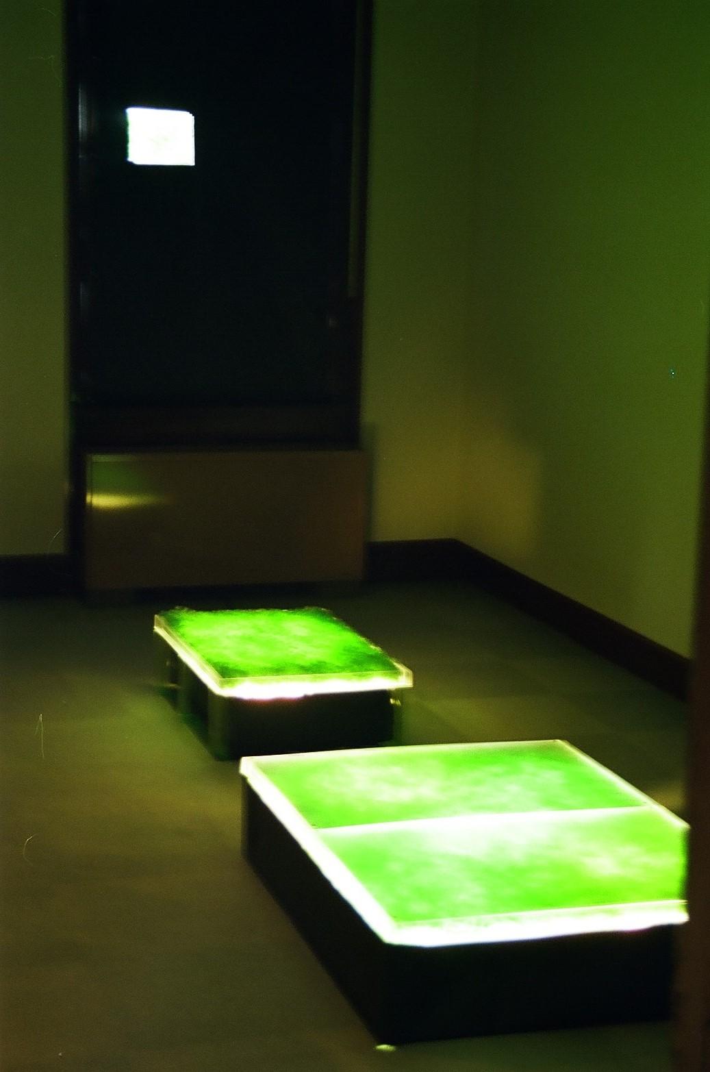 Tamura Yoko's Exihibition-Untitled-Sapporo museum mini gallery in 1999