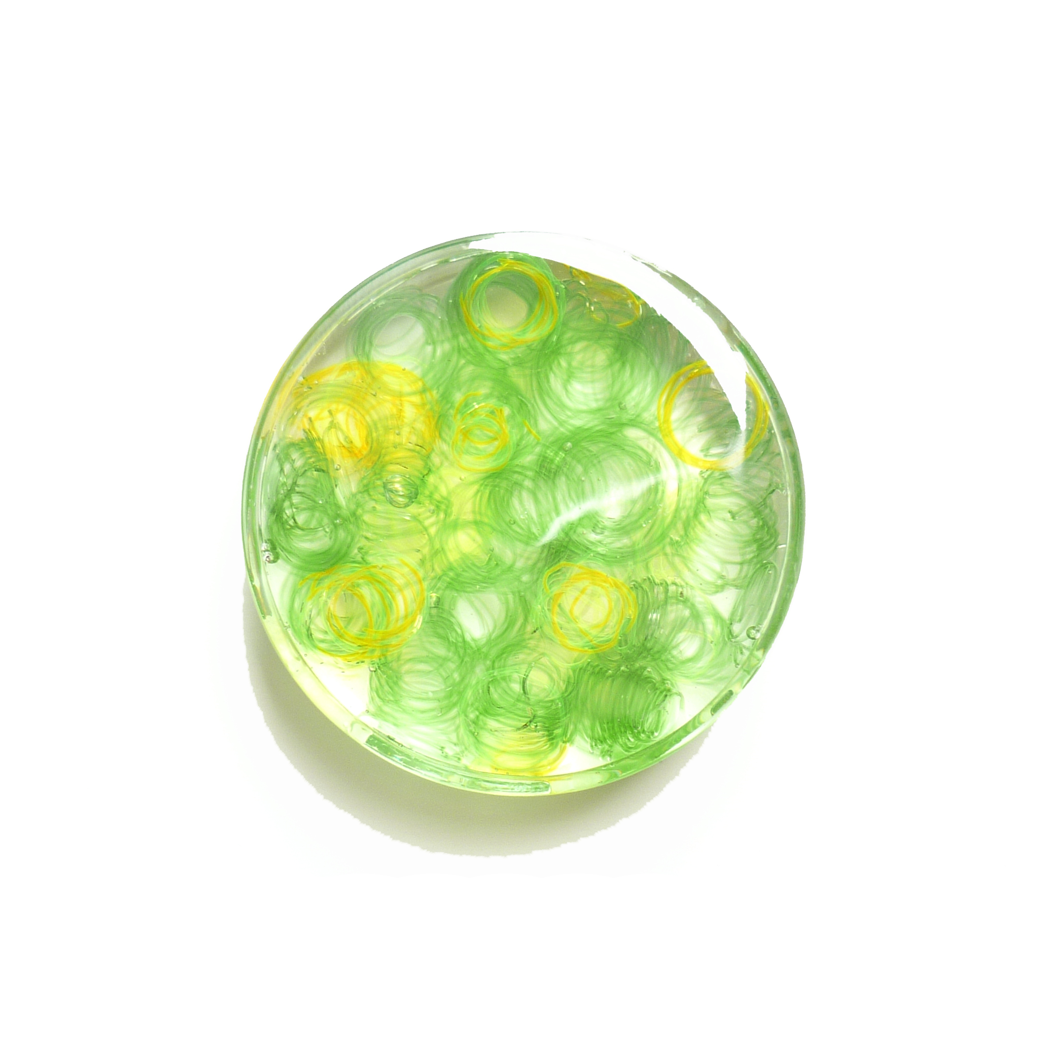 田村陽子 緑色の実験
